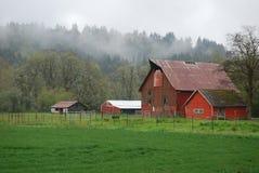 有薄雾的农场 库存照片