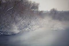 有薄雾的冬天河 冬天雾ober河 免版税库存照片