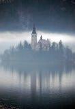 有薄雾的反映 免版税库存图片