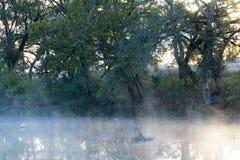 有薄雾的反映 库存照片