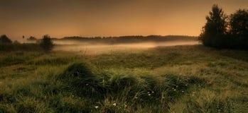 有薄雾的域 免版税库存照片