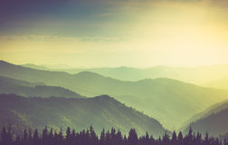 有薄雾的夏天山小山风景 库存照片