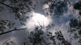 有薄雾的天空 免版税图库摄影