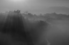 有薄雾的婆罗浮屠 免版税图库摄影