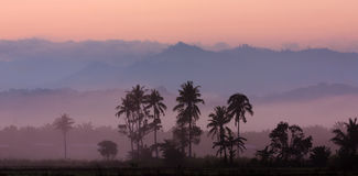 有薄雾的小山层数在日出的 免版税库存照片