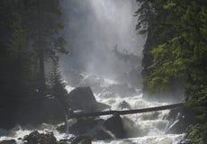 有薄雾的小河 免版税库存照片