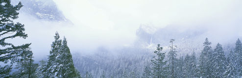 有薄雾的山 免版税库存照片