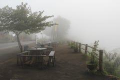 有薄雾的庭院 免版税库存照片