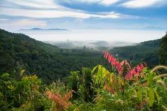 有薄雾的日出和山 免版税图库摄影