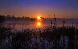 有薄雾的日出在湖反射了,现出轮廓纸莎草 免版税库存照片