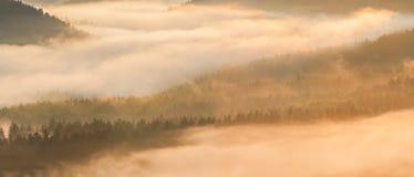 有薄雾的日出 免版税库存图片