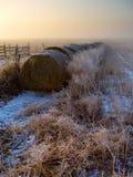 有薄雾的日出 图库摄影