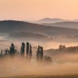 有薄雾的日出 免版税图库摄影