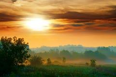 有薄雾的日出 免版税库存照片