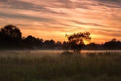 有薄雾的日落 库存图片