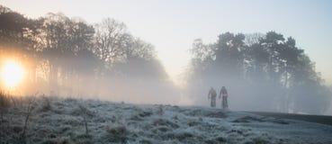 有薄雾的早晨乘驾 免版税库存图片