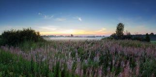 有薄雾的早晨全景在一个领域在夏天,俄罗斯,乌拉尔的 库存图片