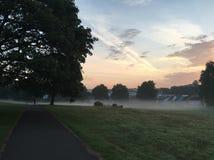 有薄雾的早晨日出在公园 图库摄影