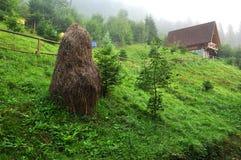 有薄雾的早晨,森林,木房子 库存照片