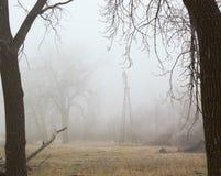 有薄雾的早晨#2 库存图片
