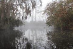 有薄雾的早晨okefenokee沼泽 免版税库存图片