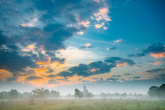 有薄雾的森林横向 风景视图 早晨在有薄雾的草甸的日出天空 秋天 免版税库存图片