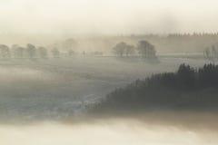 有薄雾的横向 免版税库存照片