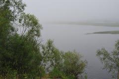 有薄雾的池塘 库存照片