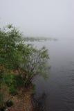 有薄雾的池塘 免版税库存照片
