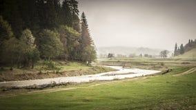 有薄雾的河在Vrancea 免版税图库摄影