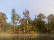 有薄雾的河 免版税图库摄影