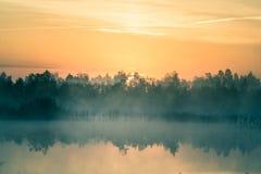 有薄雾的沼泽的一个美好,五颜六色的风景在日出期间的 与太阳的大气,平静的沼泽地风景 免版税库存照片