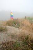 有薄雾的海滩场面01 免版税库存图片