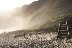 有薄雾的海滩 免版税库存图片