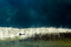 有薄雾的湖及早早晨 免版税库存图片