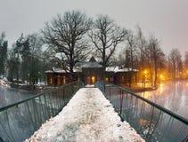 有薄雾的湖在冬天 免版税库存照片
