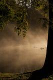 有薄雾的湖在秋天 库存照片