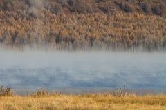 有薄雾的湖早晨 免版税库存照片