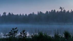 有薄雾的湖森林在芬兰 股票录像