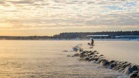 有薄雾的湖的一位孤立渔夫有一根钓鱼竿的,清早 图库摄影