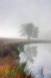 有薄雾的湖 库存图片