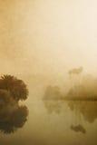 有薄雾的湖 图库摄影