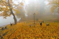 有薄雾的秋天在公园 库存图片
