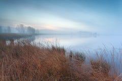 有薄雾的秋天沼泽 库存图片