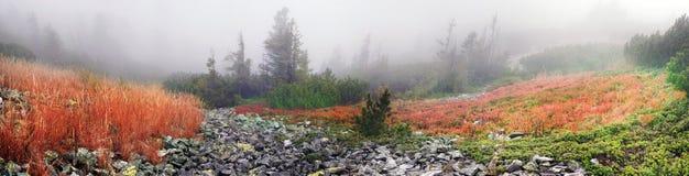 有薄雾的秋天 图库摄影