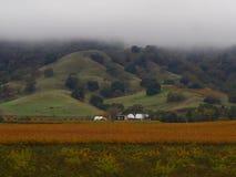 有薄雾的绵延山 免版税库存照片