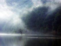 有薄雾的视图 免版税库存照片