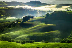 有薄雾的谷在日出的托斯卡纳 库存图片