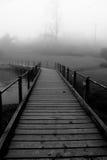 有薄雾的路径 库存图片