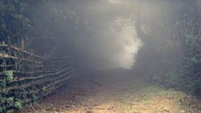有薄雾的路通过Sa Pa谷的竹森林 免版税库存图片